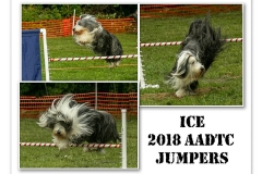 2018-ICE-JUMPERS
