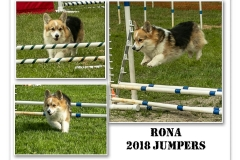 2018-RONA-JUMPERS